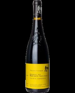 Thierry Germain Saumur Champigny 2014 wine bottle shot